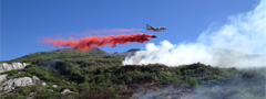 Follow the Division of Forestry on Facebook for wildland fire activity
