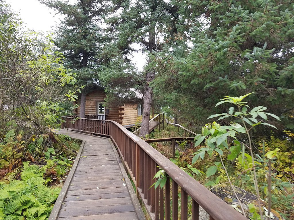 Halibut Cove Lagoon East Cabin