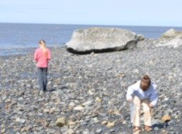 Children looking for agates on beach