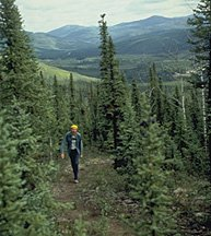 Hiker in Chena River SRA