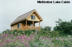 Midtimber Lake Cabin