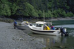 Boats on Beach in Kachemak Bay SP