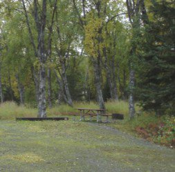 Ninilchik River Campground