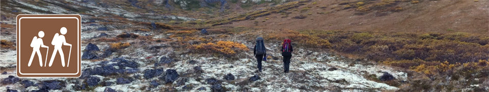 Chugach Trails Summer
