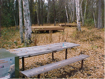 Picnic Tables at Little Susitna Public Use Facility