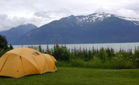 Portage Cove Campsites